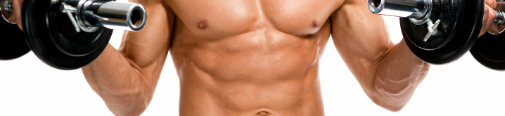 muscle-banner